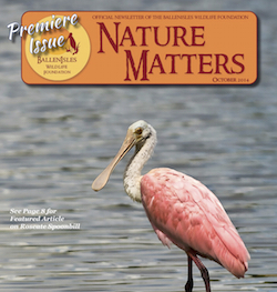 NatureMatters_Oct